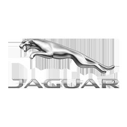 Jaguar Repair Services